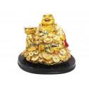 Vastu Buddha Coin