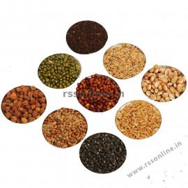Navadhaniyam ( 9 Grains )