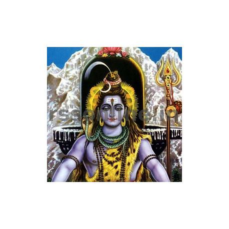 Mrityunjaya Homam