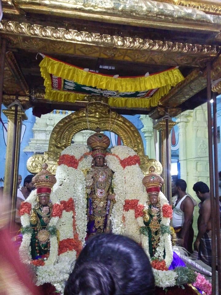 Day 1 Gold Chapparam